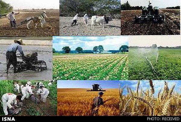 پرداخت 1200 میلیارد تومان تسهیلات اشتغال روستایی در یک سال گذشته
