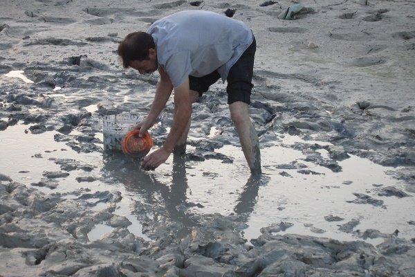 انتقاد از بی توجهی به مرگ صدها میلیون ماهی در زاینده رود
